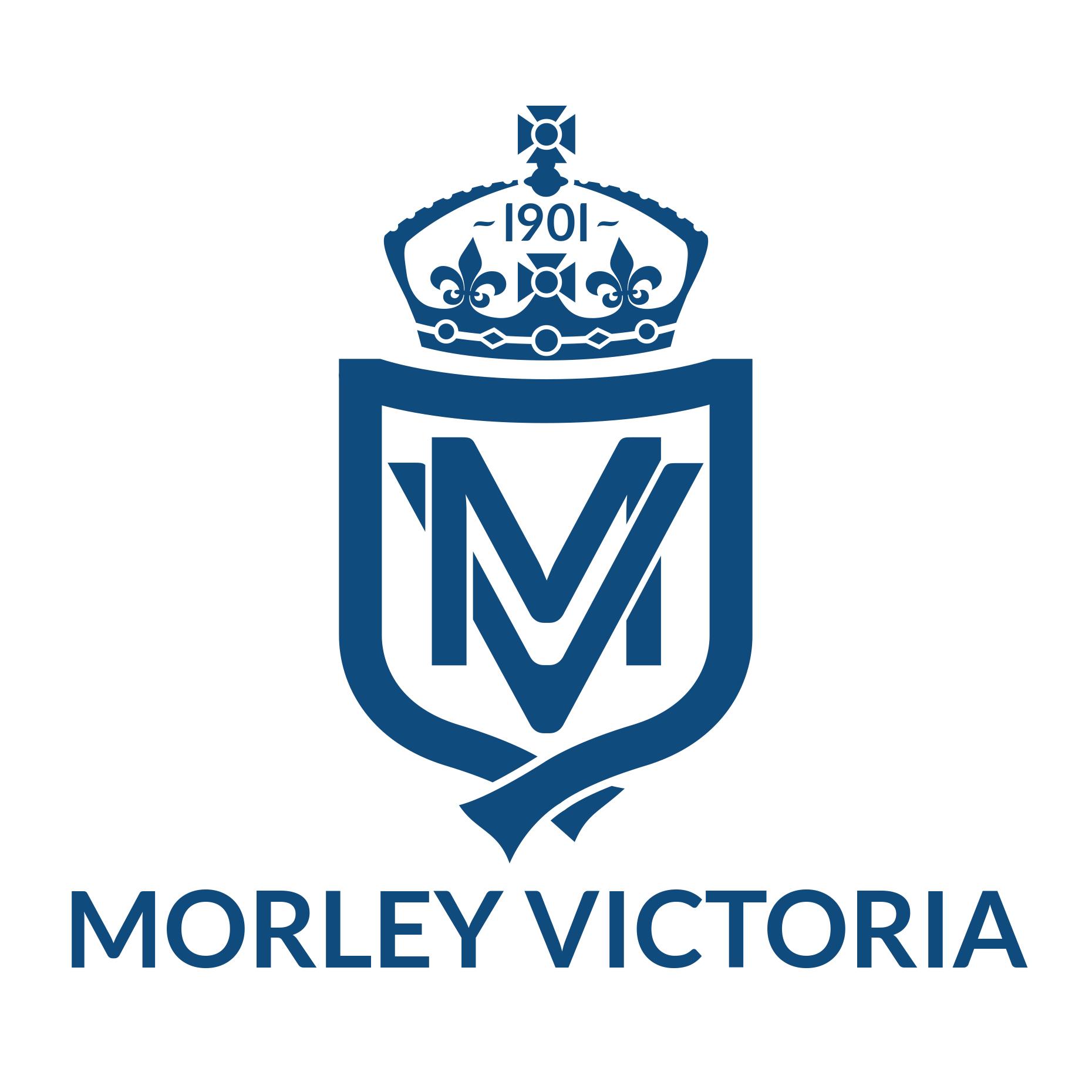 mv_logo2